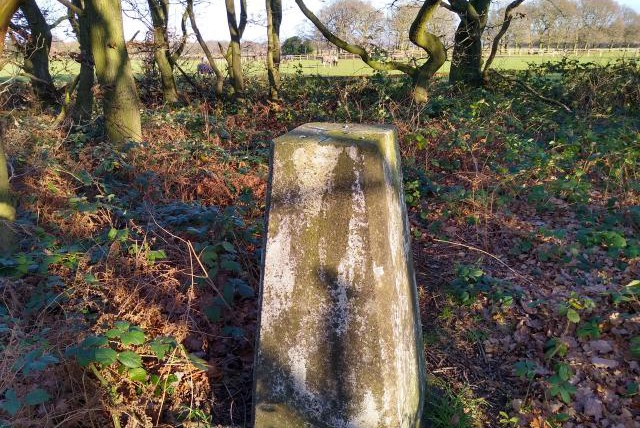 Woolley Edge Trig